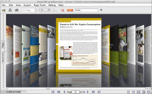 Pageflow view of a PDF file