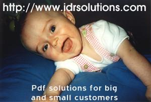 PDF solutions for big and small customers