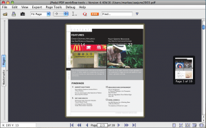 single thumbnail view of PDF file