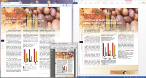 An example where the top of the next page is appearing at the bottom of the previous page.