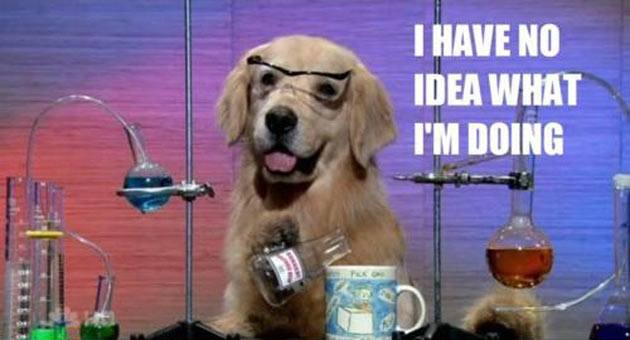 i-have-no-idea-what-im-doing-science-dog