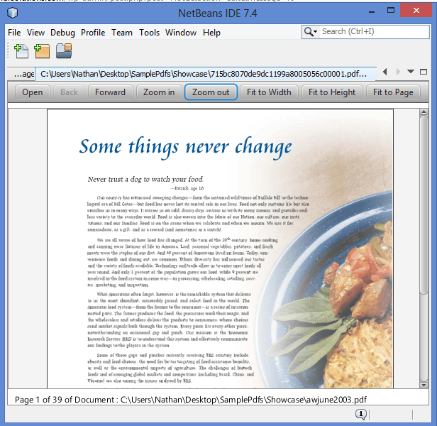 Pdf Viewer Java