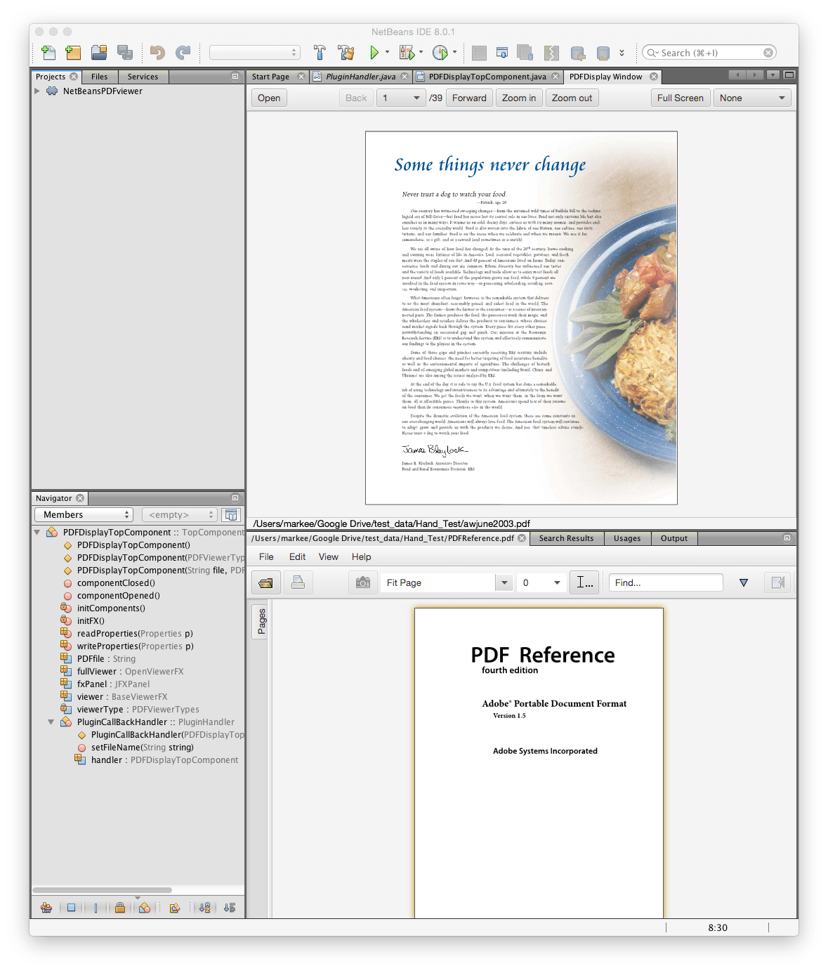 Writing a javafx pdf viewer plugin for netbeans 10 integrating pdf viewers in netbeans baditri Gallery